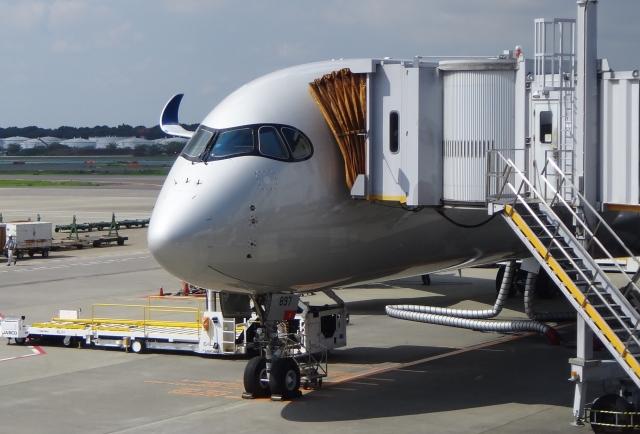 航空株主優待券を忘れてしまったときの3つの失敗回避方法
