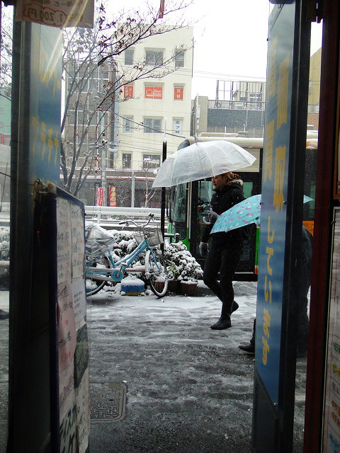 金券ショップ 門前仲町 大雪